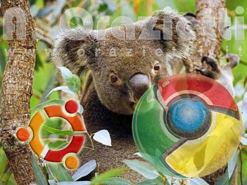karmik-koala-chrome