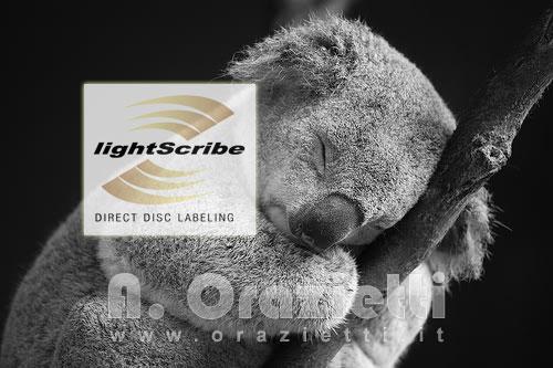 Lightscribe in Karmik Koala